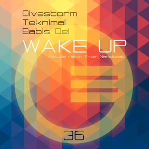 DIVESTORM/TEKNIMAL/BABIS DEL - Wake Up
