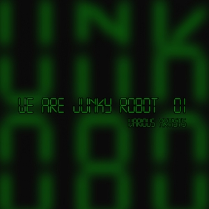 VARIOUS - We Are Junky Robot #1