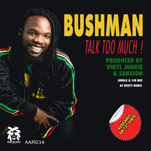 VINYL JUNKIE/SANXION feat BUSHMAN - Talk To Much