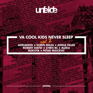 VARIOUS - Cool Kids Never Sleep Vol 2