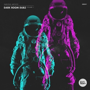 ACCRETION/CYBERTECHNIC/FEVA/NAVE/THE HOLLOW TRIANGLES/THE PALMER DJ - Dark Room Dubz Vol 1
