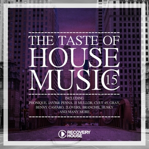 VARIOUS - The Taste Of House Music Vol 15