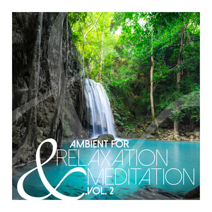 VARIOUS - Ambient For Relaxation & Meditation Vol  2