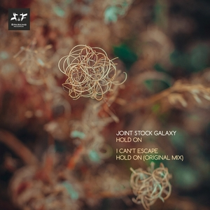 JOINT STOCK GALAXY - Hold On