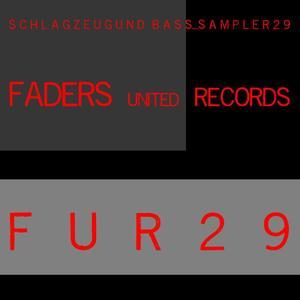 VARIOUS/RAIDEK - Schlagzeug Und Bass Sampler 29