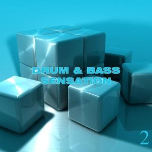 VARIOUS - Drum & Bass Sensation Vol 2