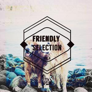 VARIOUS - Friendly Selection Vol 6