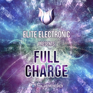 ELITE ELECTRONIC/VARIOUS - Full Charge (unmixed tracks)