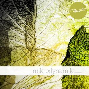 THOMAS BURKHARDT - Mikrodynamik