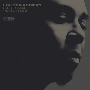 DAVID NYE/ERIC REDD/LIAM KEEGAN - You Can Feel It
