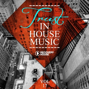 VARIOUS - Trust In House Music Vol 17