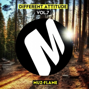 CARMELO CARONE/DEEP CONTROL/DJ PARTY-ZAN/NEGROL/PETRO POPERECHNIY/ - Different Attitude Vol 7