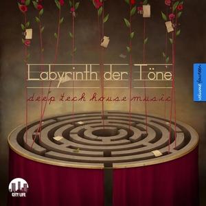 VARIOUS - Labyrinth Der Tone Vol 14 (Deep & Tech House Music)