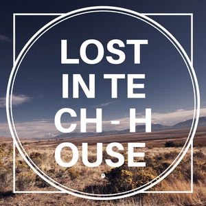 VARIOUS - Lost In Tech-House Vol 9