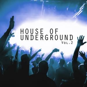 VARIOUS - House Of Underground Vol 2