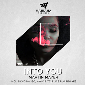 MARTIN MAYER - Into You