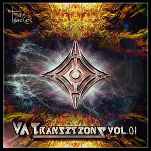 VARIOUS - Transitions Vol 1