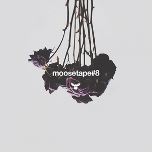 VARIOUS - Moosetape Vol 8