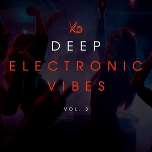 VARIOUS - Deep Electronic Vibes Vol 3