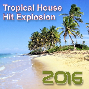 VARIOUS - Hit Explosion/Tropical House 2016