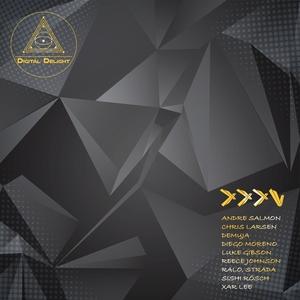 VARIOUS - Digital Delight Presents XXXV