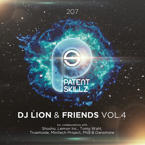 VARIOUS - DJ Lion And Friends Vol 4