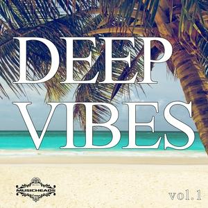 VARIOUS - Deep Vibes Vol 1