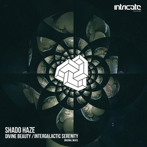 SHADO HAZE - Divine Beauty