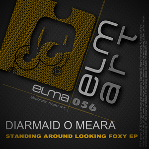 DIARMAID O MEARA - Standing Around Looking Foxy EP