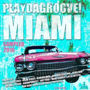 VARIOUS - Playdagroove! Miami Sampler 2016 (Club Edition)
