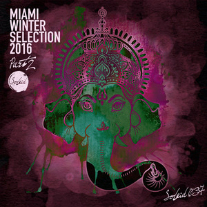 VARIOUS - Miami Winter Soleid Selection 2016, Part 2