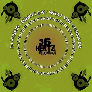 DJ HYBRID - Down Low/What You Gonna Do