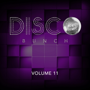 VARIOUS - Disco Bunch Vol 11