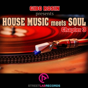 VARIOUS - Gibo Rosin presents House Music Meets Soul/Chapter 3