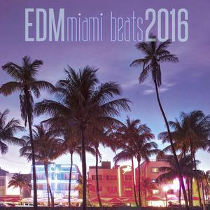 VARIOUS - EDM Miami Beats 2016