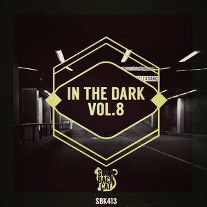 VARIOUS - In The Dark Vol 8