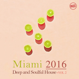 VARIOUS - Miami 2016/Deep And Soulful House Vol 2