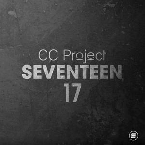 CC PROJECT - Seventeen