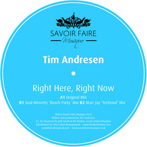 TIM ANDRESEN - Right Here, Right Now