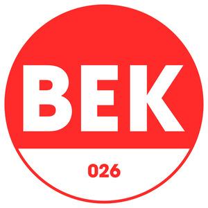 LESTER FITZPATRICK - BS Gary Beck Remixes