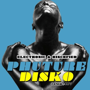 VARIOUS - Phuture Disko Vol 14/Electrified & Discofied