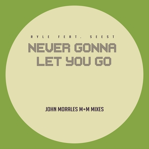 RYLE feat SEEST - Never Gonna Let You Go