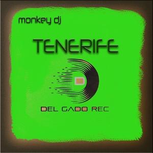 MONKEY DJ/SILVANO DEL GADO - Tenerife (feat Cris Pacini)