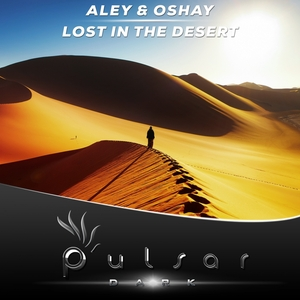 ALEY/OSHAY - Lost In The Desert