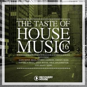 VARIOUS - The Taste Of House Music Vol 16