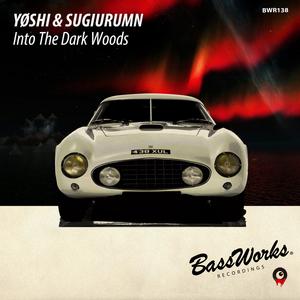YOSHI/SUGIURUMN - Into The Dark Woods