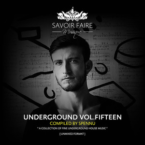 VARIOUS - Underground Vol Fifteen (Compiled By Spennu)