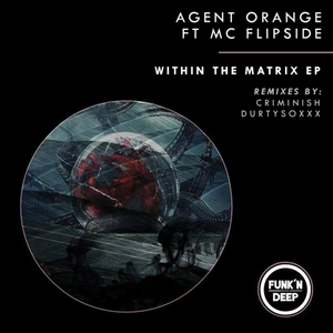 AGENT ORANGE DJ feat MC FLIPSIDE - Within The Matrix