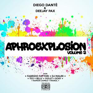 VARIOUS - Diego Dante/Deejay Pax Present Aphro Explosion Vol 2