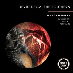 DEVID DEGA/THE SOUTHERN - What I Mean